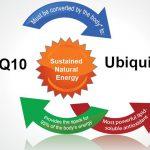 Q10 vital for health and longevity